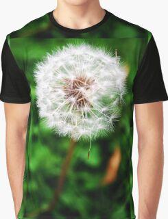 Wishes Graphic T-Shirt