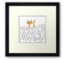 Funny cats Framed Print