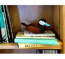Duck Decoy on Bookshelf Photographic Print