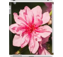 Spring Blooms iPad Case/Skin