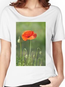 Beautiful photo of poppy in bloom Women's Relaxed Fit T-Shirt