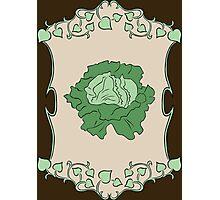 Gardener's Delight | Lettuce Photographic Print