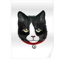 Cat black and white Poster