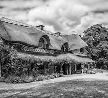 The Swiss Cottage by Martina Fagan