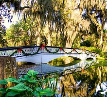 White Walking Bridge at Magnolia Plantation by TJ Baccari Photography