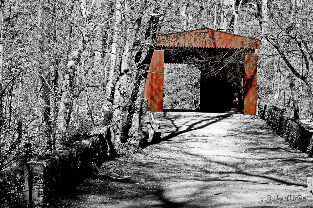 Thomas Mill Covered Bridge by GalleryThree