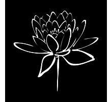 Lotus Flower Calligraphy (White) Photographic Print