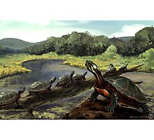 Painted Turtle - WITHOUT Text Photographic Print