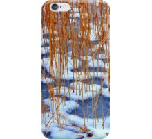 Ice Patterns.........Berlin iPhone Case/Skin