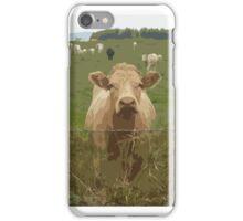 Curious Cork Cows iPhone Case/Skin