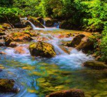 A forest stream. Sticker