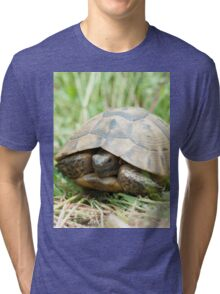 Tortoise in the meadow Tri-blend T-Shirt
