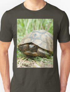 Tortoise in the meadow T-Shirt