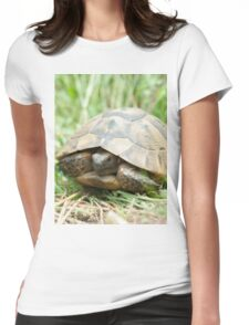 Tortoise in the meadow Womens Fitted T-Shirt