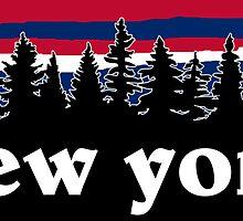 New York by bperky