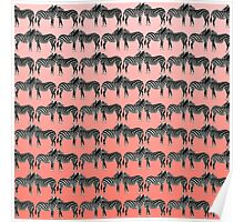 Cute Funny Zebra Pattern on Coral Gradient Poster