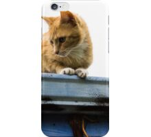 Kitty Crouch iPhone Case/Skin