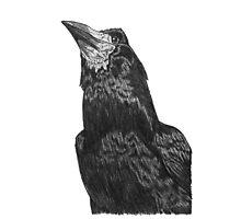 Raven Superhero Doodle Photographic Print