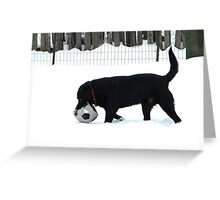Snow Games Greeting Card