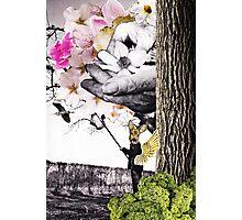 Magical Garden Photographic Print