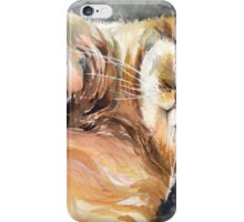 Sweet companion iPhone Case/Skin