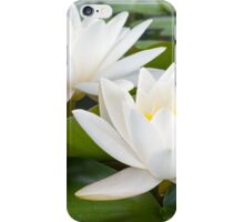 European White Waterlily iPhone Case/Skin