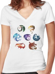 Dragon Classes - Galaxy Women's Fitted V-Neck T-Shirt