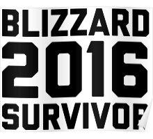 Blizzard 2016 Survivor Poster