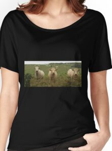 Curious Cork Cows Women's Relaxed Fit T-Shirt