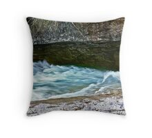 WHOOOOOOSH Throw Pillow