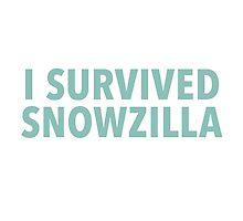 Snowzilla Blizzard 2016 by typeo
