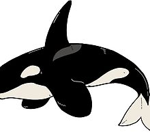 Orca Whale by plantqueen