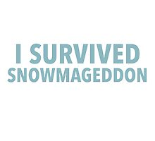 I survived Snowmageddon by typeo