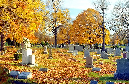 Autumn of our Lives  by Alberto  DeJesus