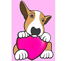 Love You Bull Terrier Puppy Photographic Print