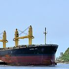 Global Ace - Newcastle Harbour NSW Australia by Phil Woodman