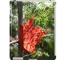 Canadian Maple Leaf iPad Case/Skin