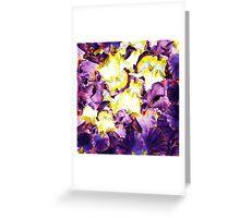 Iris Flower Petals Abstract  Greeting Card