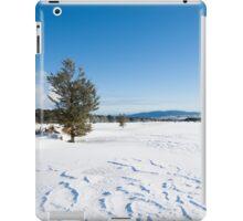 Snowy landscape. iPad Case/Skin