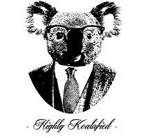 Highly Koalafied by apila