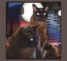Burmese Cats and the Moon Baby Tee