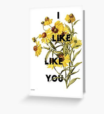 i like like you Greeting Card