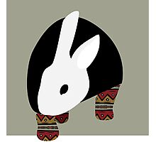 pattern rabbit Photographic Print