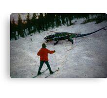 35mm Found Slide Composite - Snow Lizard Canvas Print