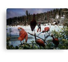 35mm Found Slide Composite - Snow Flamingos Canvas Print