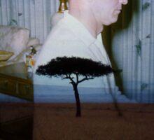 35mm Found Slide Composite - Piano Tree Sticker