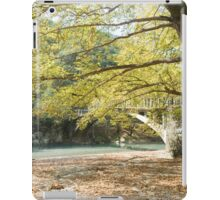 Voidomatis river, Zagori, Pindus mountains, Epirus, Greece.  iPad Case/Skin