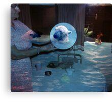 35mm Found Slide Composite - Polar Bear Plate Canvas Print