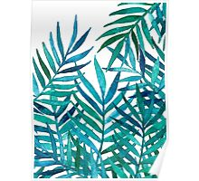Watercolor Palm Leaves on White Poster