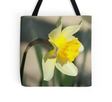 Narcissus. Jonquil narcissus flower Tote Bag